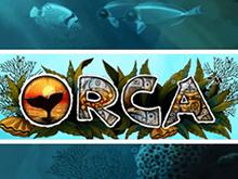Слот Orca