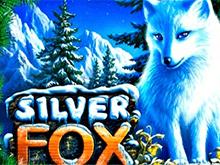 Silver Fox - онлайн аппарат на деньги