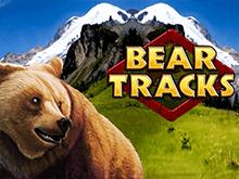 След Медведя онлайн на деньги